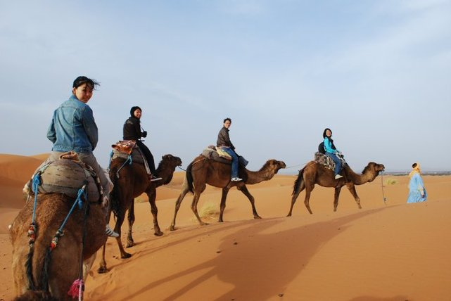 sahara tours trek